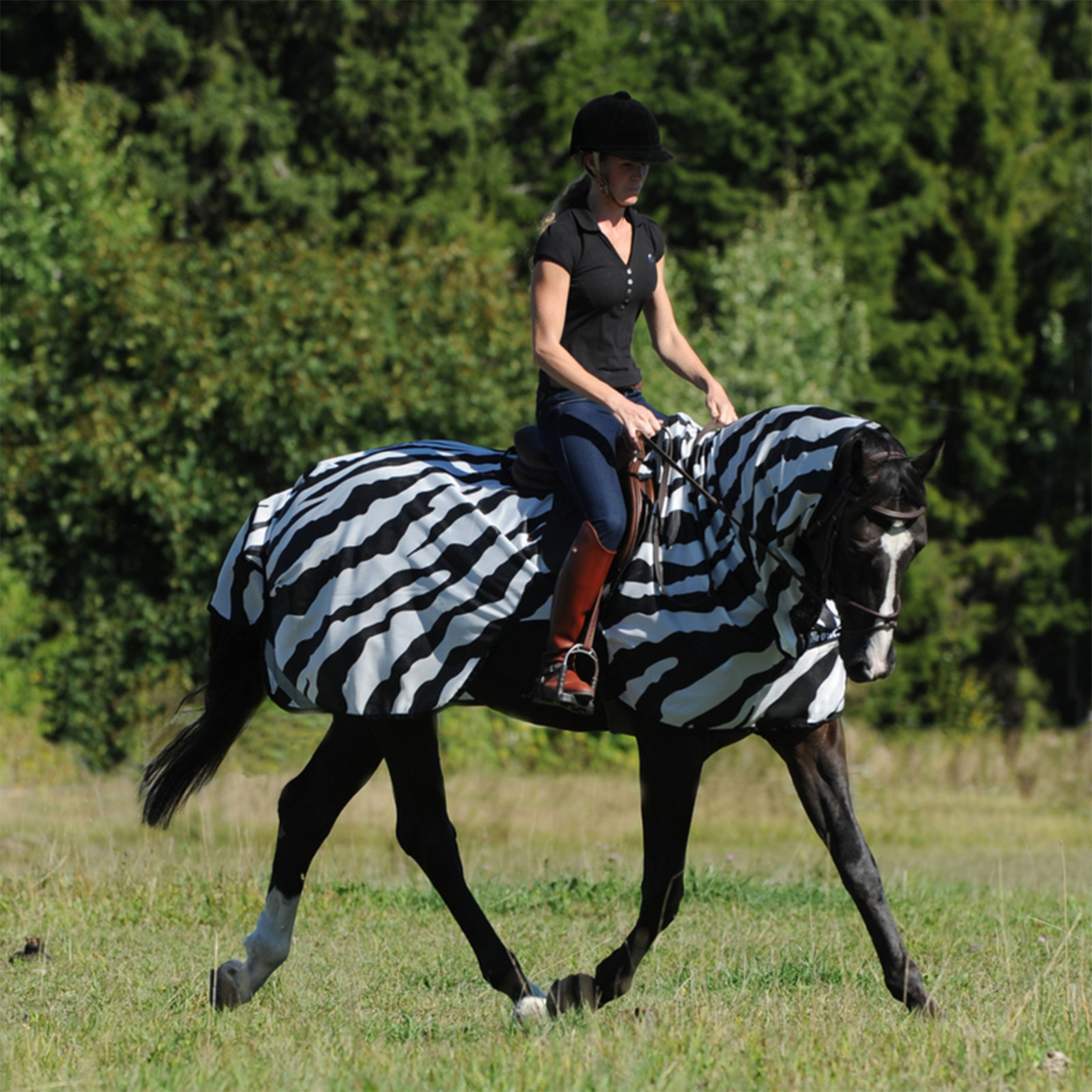 Buzz-Off Riding Zebra täcke
