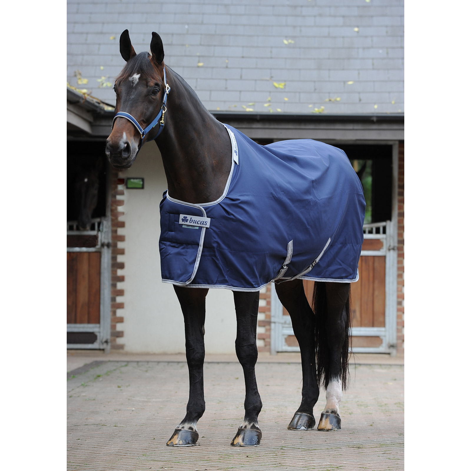 Bucas Celtic Stable Medium täcke