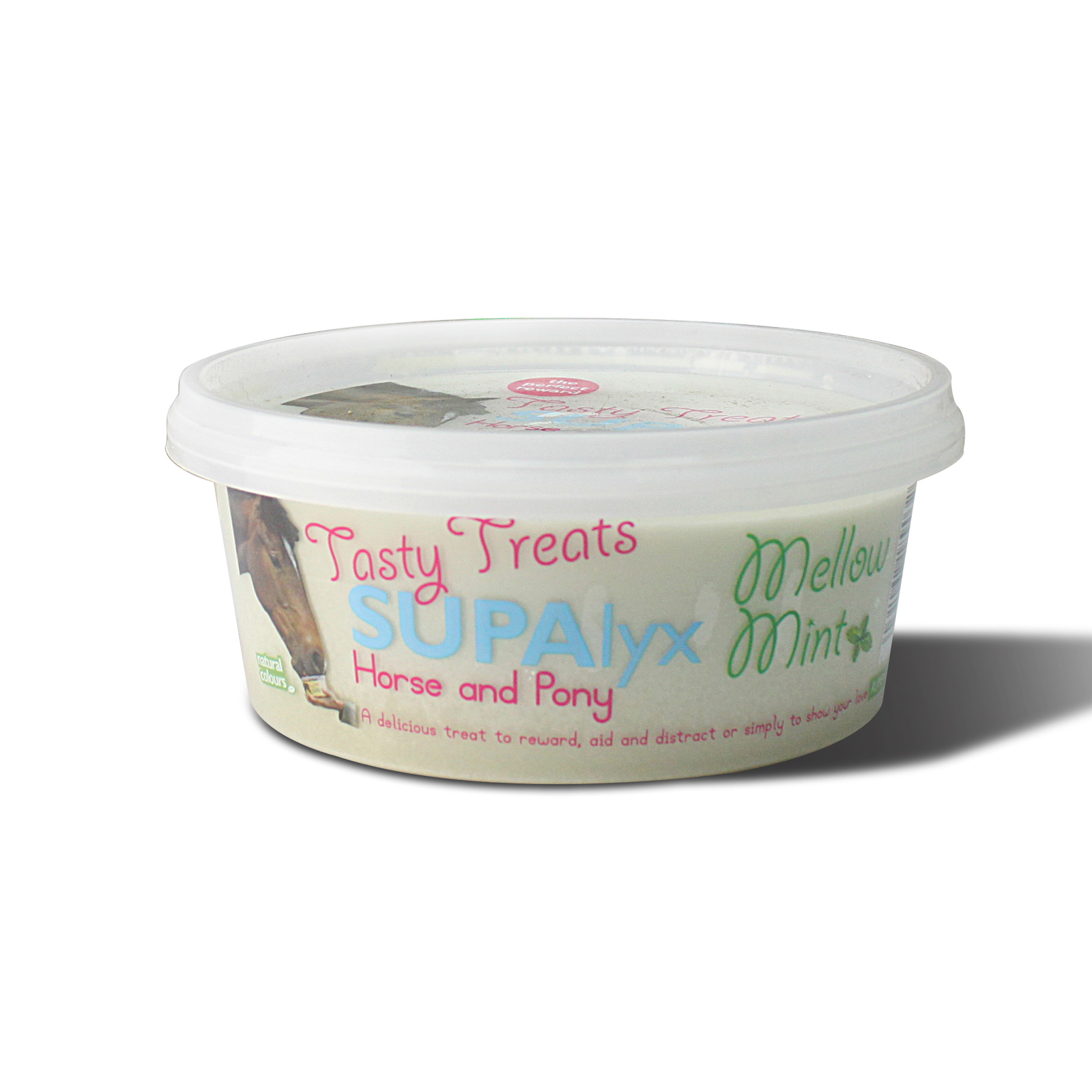 Nettex Tasty Treats Mint 650 g