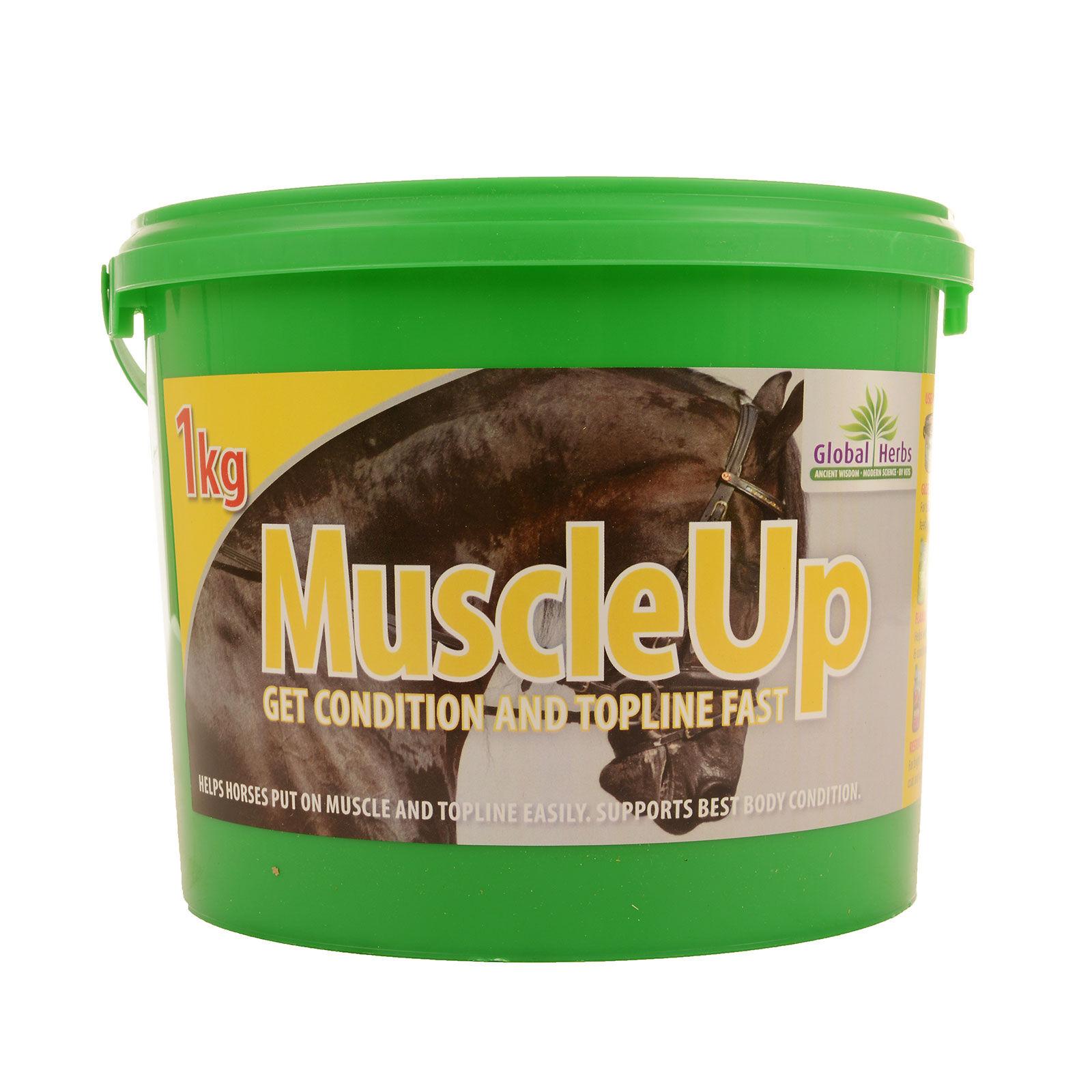 fibergi muscle up